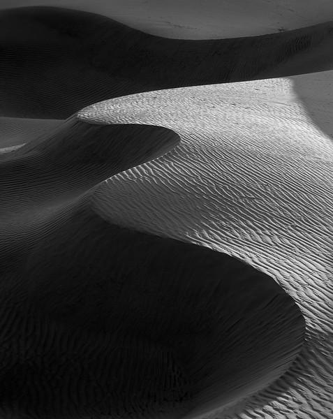 Dunes Curves B&W.jpg