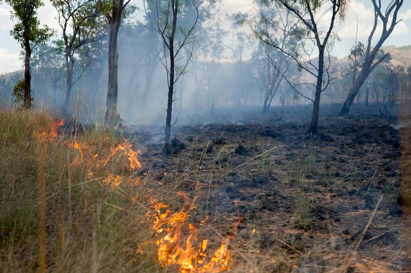 Bush fire. Western Australia.