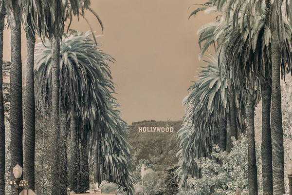 LOS ANGELES  INFRARED