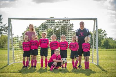 Pink Panthers Spring 2019