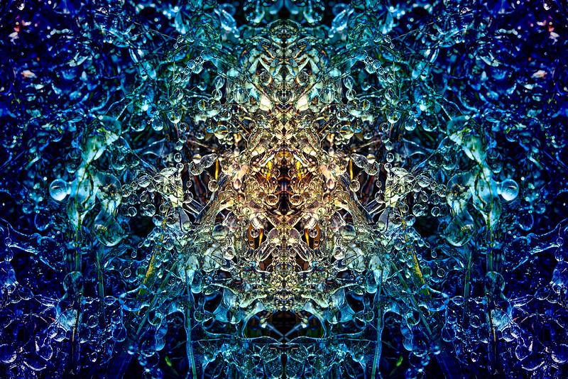 20201012-_DSC4637-Edit-Edit-mirror-1-1.jpg