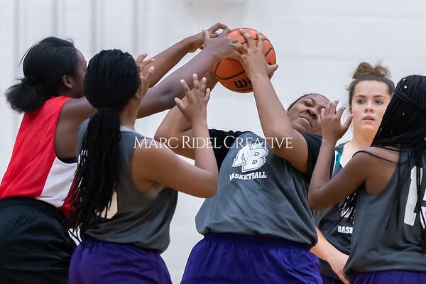 Broughton girls basketball vs Wake Forest. November 14, 2019. D4S_9695