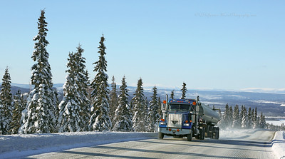 Alaska Aurora Borealis 3-2014