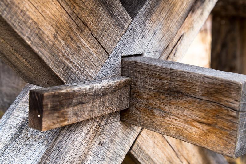 Assemblage of Oak