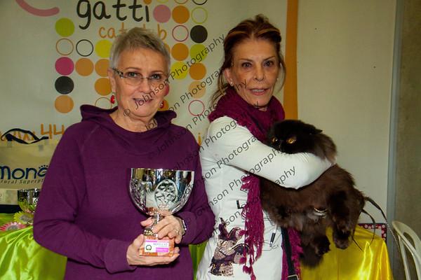 CFA/TICA/Ferret Show 01-17 Chiuduno, Italy,  Candid