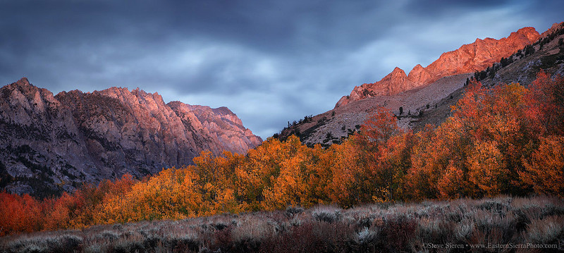 Aspen_Grove_Fall_Color_Piute_Crags_Panorama.jpg