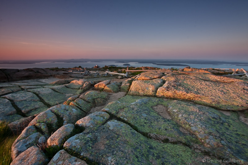 Late day light... Acadia