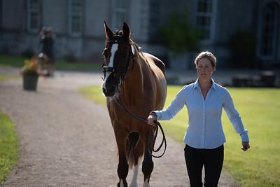 Camphire International Horse Trials