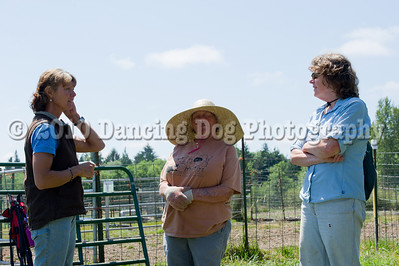 Fido's Farm Herding Camp Friday Fun