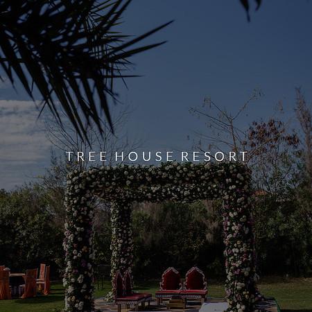 Tree House Resort | Decor