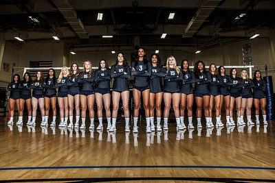 2017 Women's Volleyball