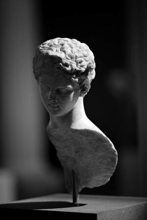 Greek & Roman Gallery
