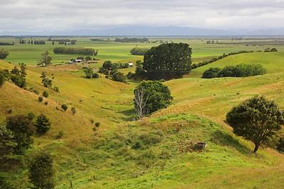 New Zealand - On Road