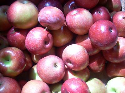 2007-09 apples