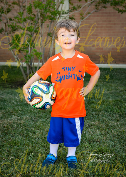 Rookie Tiny & Mighty - TNYMCA Soccer Spring 2016 -
