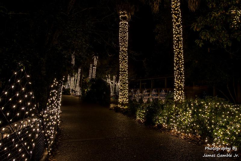 Houston-Zoo-Lights-3107.jpg