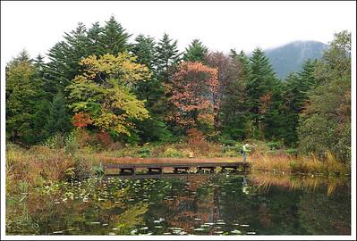 Shiseikaen in October