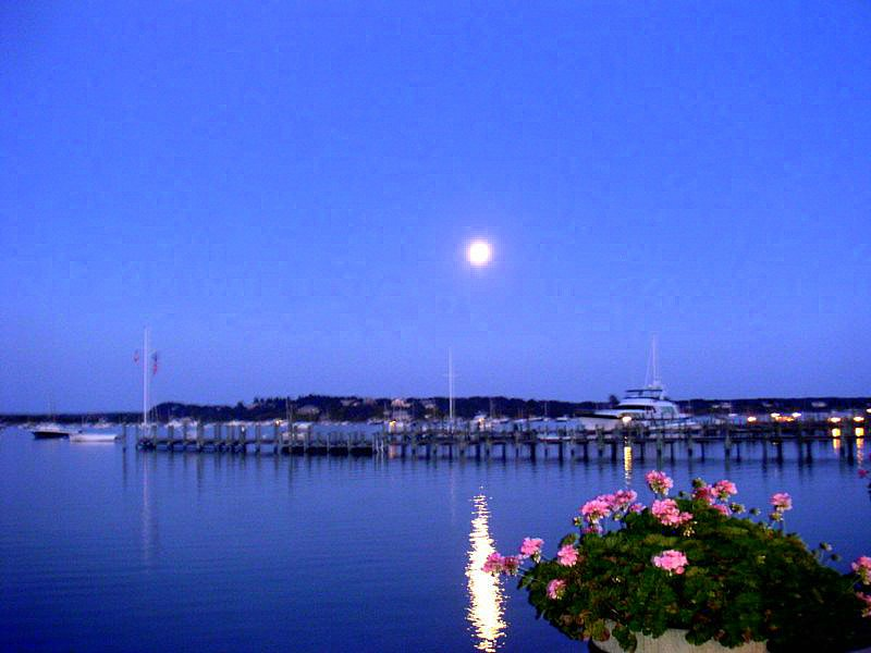 Moon Rise on Harbor
