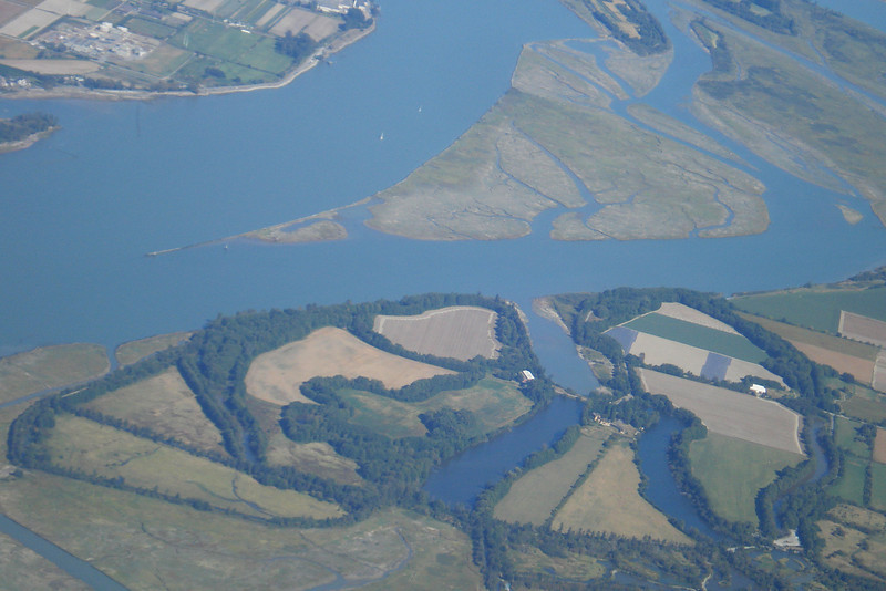 Vancouver Delta.jpg