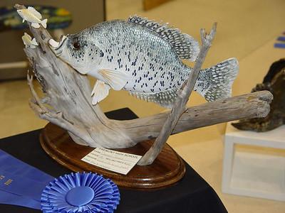 4/28/2005 NCCS Art Show