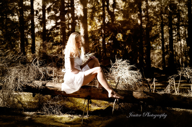 the-forest-jeaster-photography.jpg