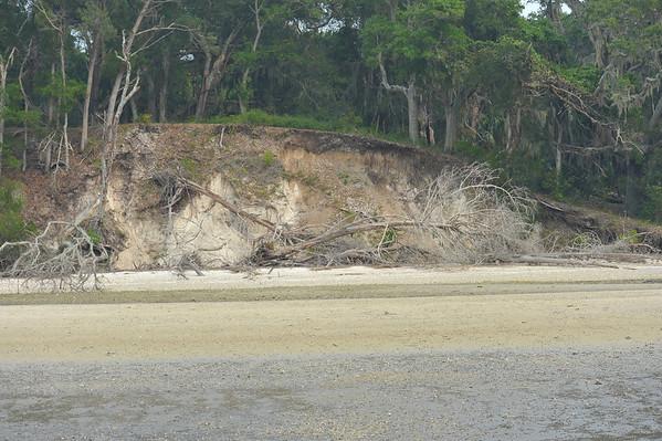 Terrapin Point - Cumberland Island Documented 06-17-11