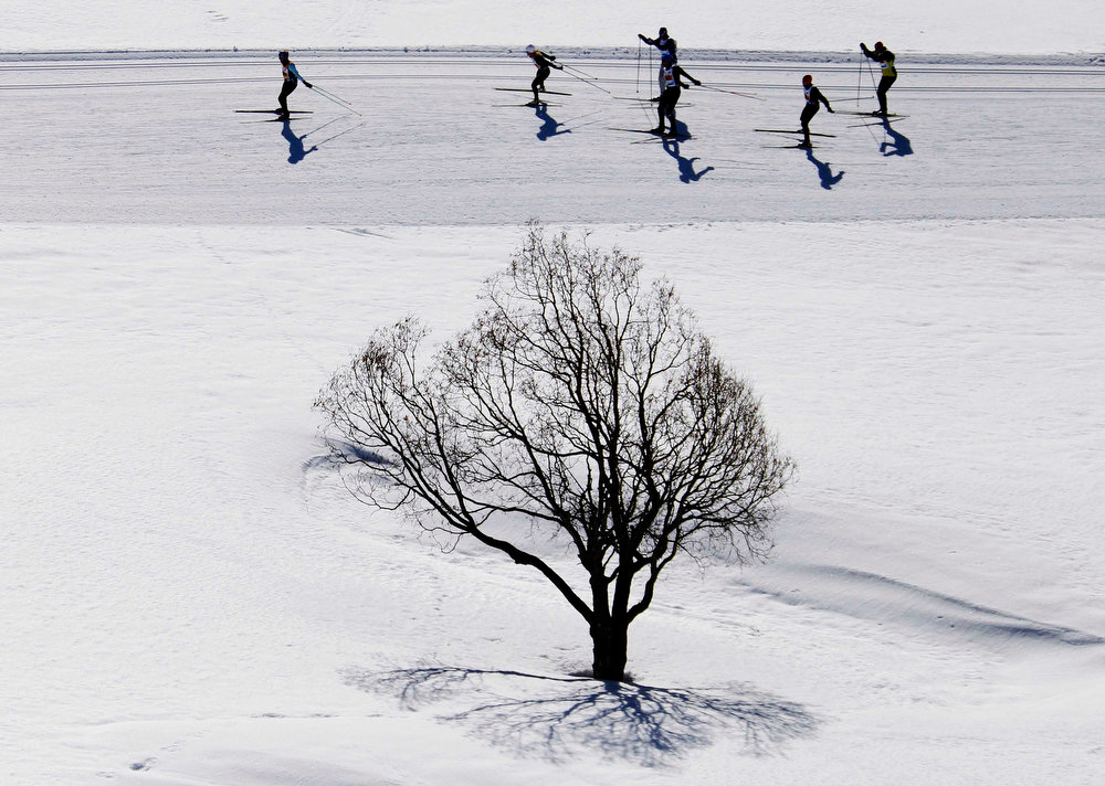 . Cross-country skiers race during the Engadin Ski Marathon near the village of S-chanf March 10, 2013. More than 12,000 skiers participated in the 26.2 miles race between Maloja and S-chanf near the Swiss mountain resort of St. Moritz. REUTERS/Michael Buholzer
