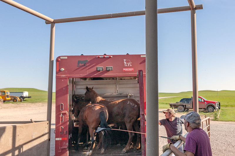 As the trailer gate is slammed shut, it will automatically latch.