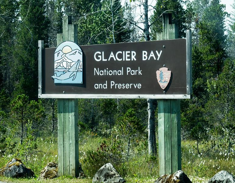 Glacier Bay_DSC04684.jpg