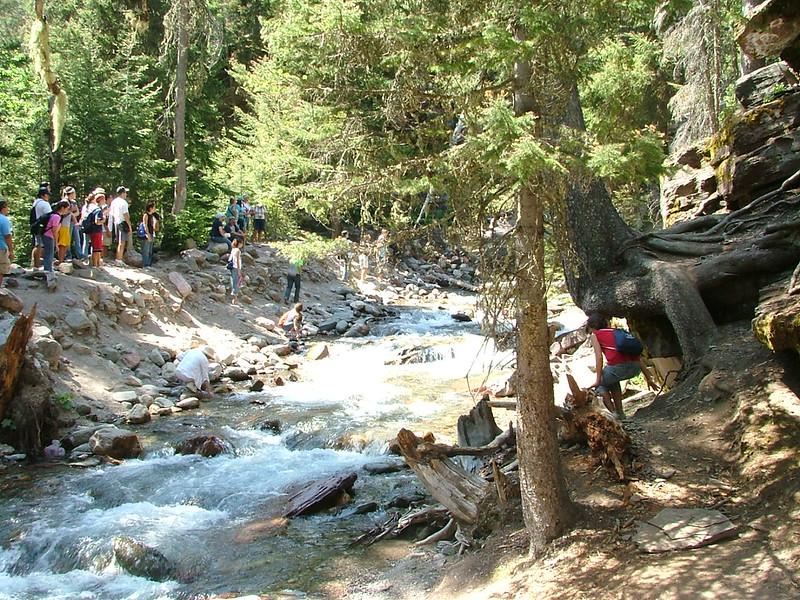 2008-07-24-YOCAMA-Montana_3623.jpg