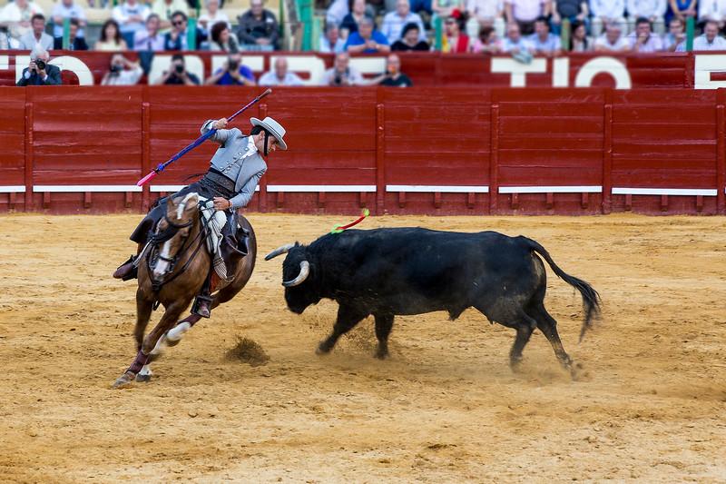 Bullfighting H31.jpg