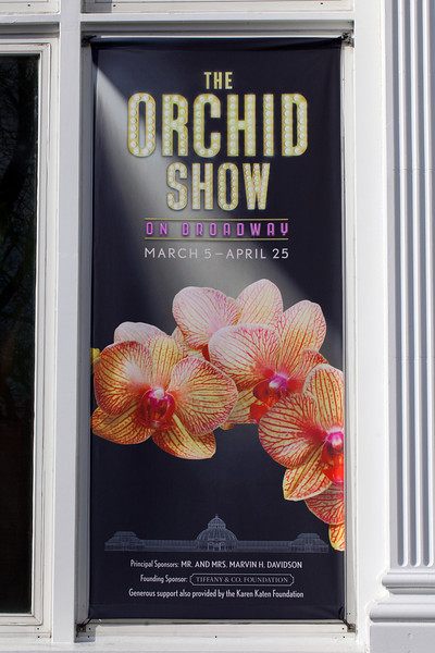 NYBG Orchid Show 2011
