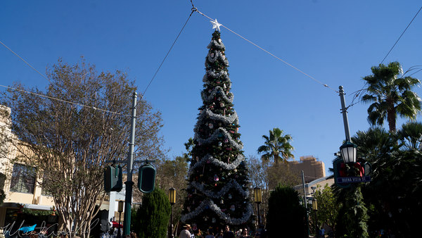 Disneyland Resort, Disneyland, Christmas, Holiday, Holidays, Christmas Time, Disney California Adventure, Buena Vista Street