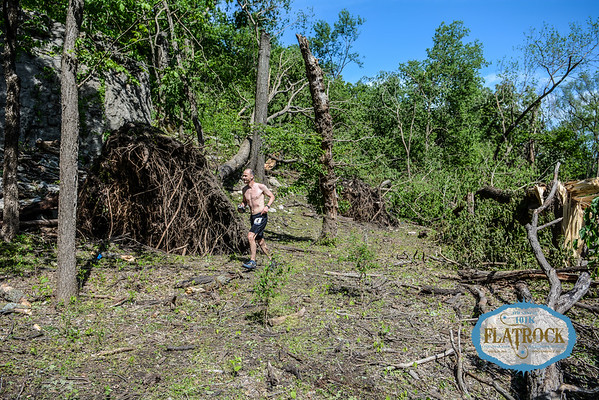 On Course - Tree Damage