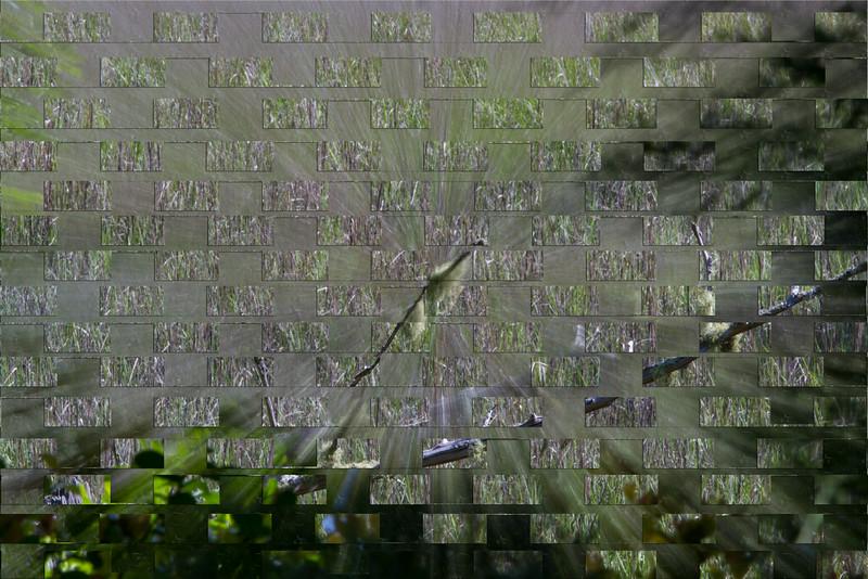 9833-Edit.jpg
