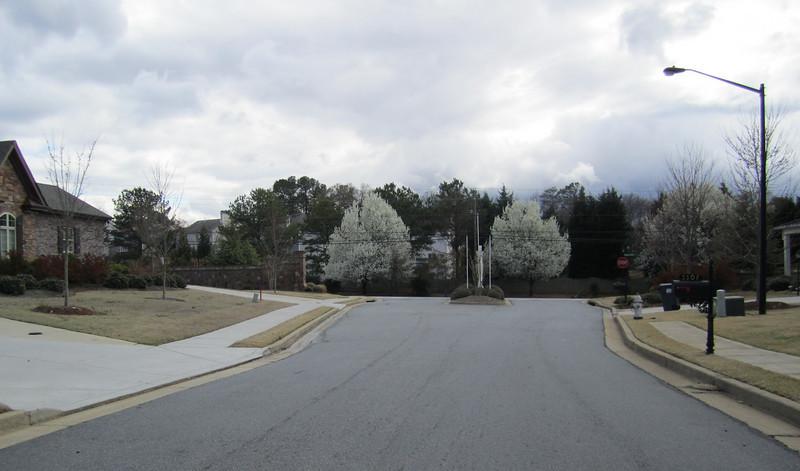 Ebenezer Farm Marietta GA Homes (9).JPG