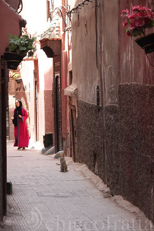 2012-08-20 Marrakech
