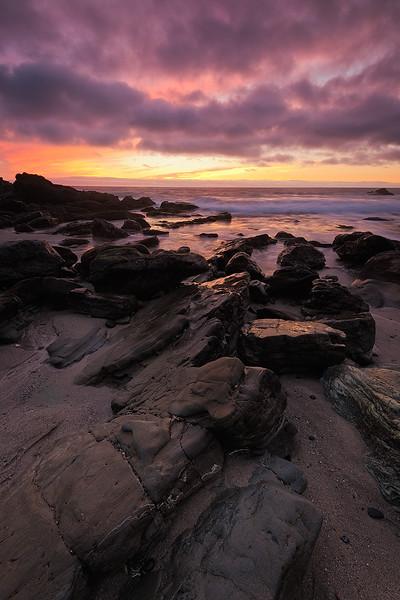 WEB SM Moss Cove_0075.jpg