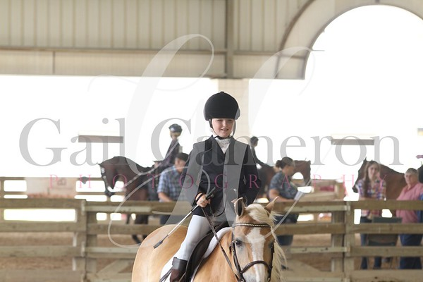 Pony Equitation