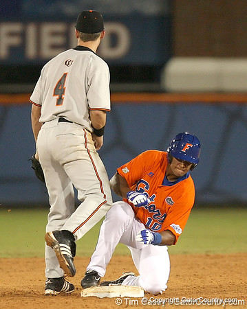 UF baseball vs. Campbell, 3/4/08