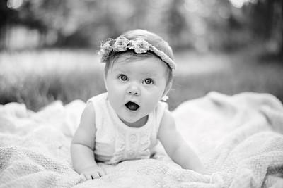 Harper 6 months