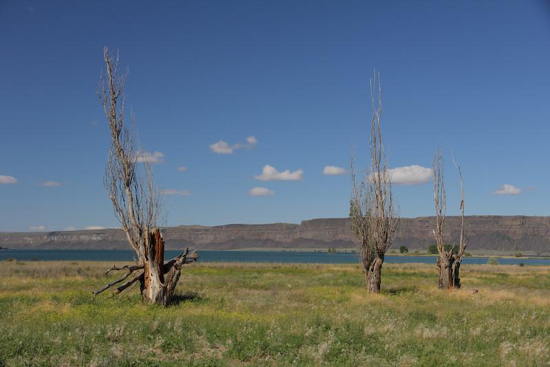Banks Lake 2012 07.JPG
