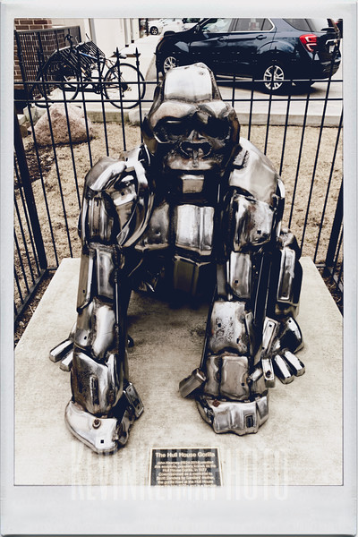 The Hull House Gorilla