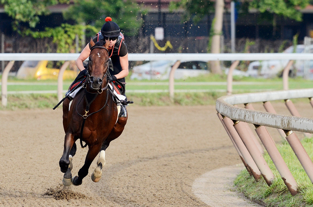 . Exercise rider Jen Patterson sits atop Kentucky Derby winner Orb Aug 19, 2013 after his final major work on the Oklahoma Training Center track in Saratoga Springs, N.Y. Orb will compete in Saturday\'s Travers Stakes at the Saratoga Race Course.Photo Erica Miller/The Saratogian 8/19/13 Orb2