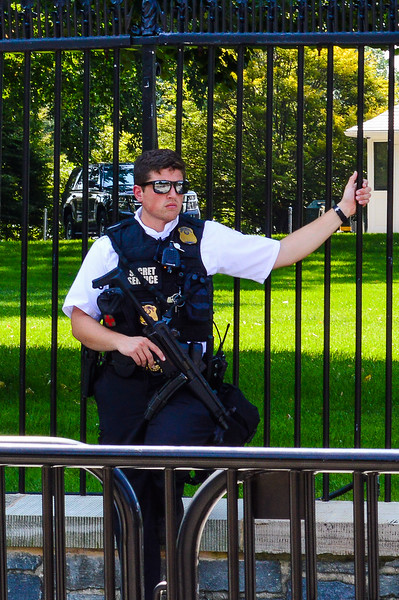 Big Gun outside the White House