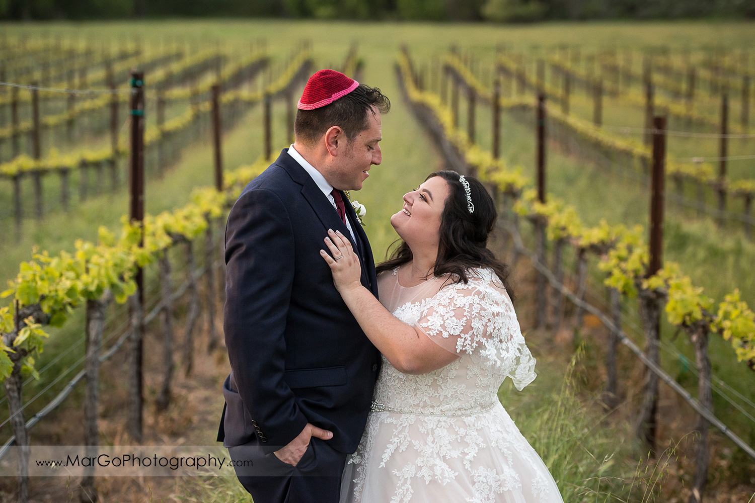 portrait of jewish bride and groom in the vineyards at Livermore Garre Vineyard and Winery