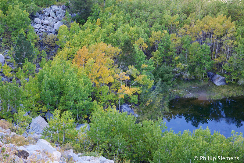 Bishop Creek canyon near Aspendell