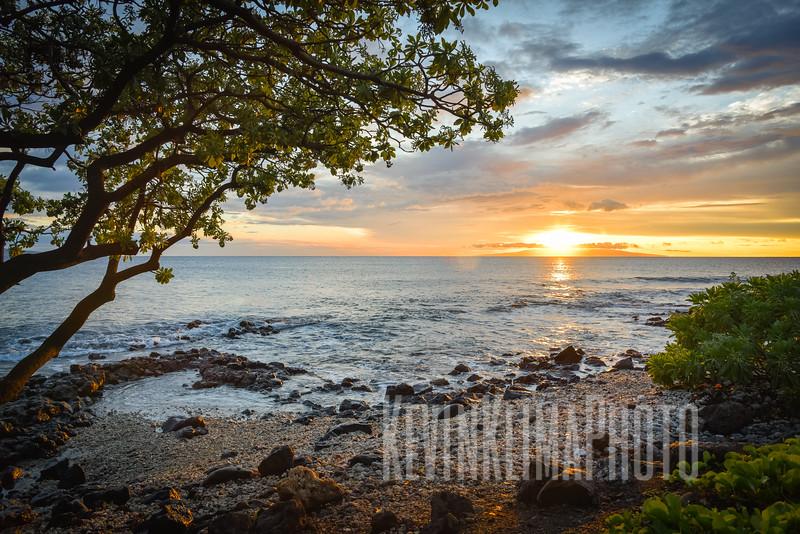 Maui2017-006.jpg