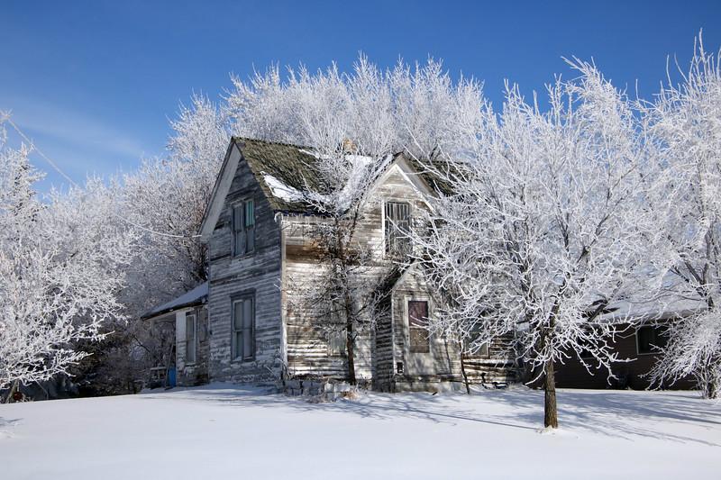Winter Wonders 12.jpg