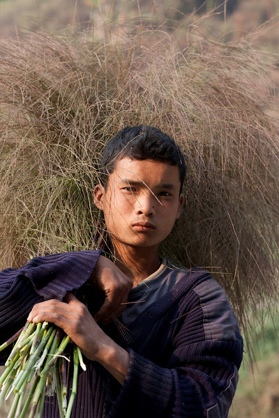Carrying in the crop.  A boy at the road side pauses for a moment in Eastern Bhutan